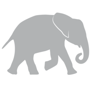 cropped-elephant_projects_symbol.png